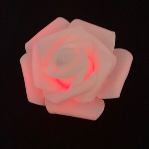 MUST SEE PICS! White rose changes colors + battery